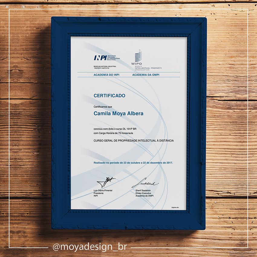 Certificado do curso geral de Propriedade Intelectual do INPI